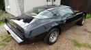 1979 Pontiac Trans Am _2
