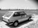Mk1 Ford Fiesta_2